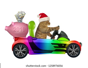 The cat in the Santa Claus hat drives a color car with a piggy bank. 2019. White background.