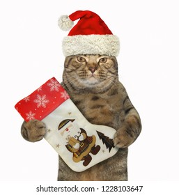 The cat in Santa Claus hat holds a big Christmas boot. White background.