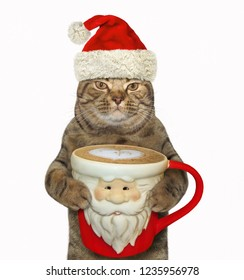 The cat in Santa Claus hat holds a big cup of black coffee. White background.