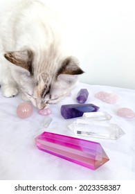 Cat selects crystals and does a Reiki mineral healing session