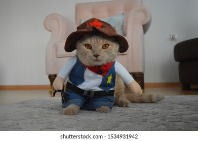 Cat with Sheriff Mask Costume