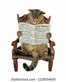 The cat is sitting in the armchair and reading a newspaper. White background.