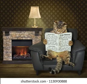 The cat is sitting in the leather armchair and reading a newspaper near a fireplace.