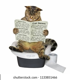 The cat is sitting on the toilet and reading a newspaper. White background.