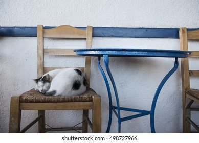 A cat sleeps on a chair, in a tavern at the Greek island of Astypalaia, in Dodecanese island complex.