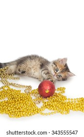 cat, small, Christmas, New Year, Christmas decorations, gift