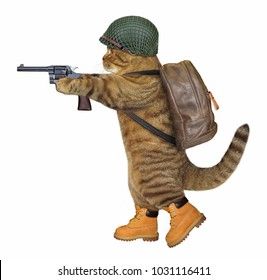 The cat soldier in the helmet holds a real revolver. White background.