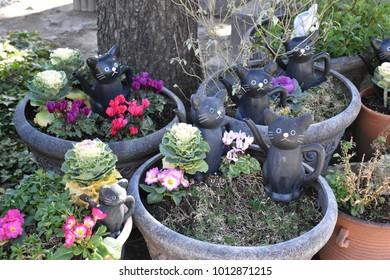 Cat statue in temple
