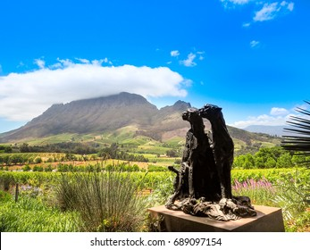 Cat statue in vineyard view with big rock mountain and cloud and navy blue sky background in wine farm of Delaire Graff Estate, Stellenbosch, Cape Town, South Africa in summer at 22 Nov 2016.