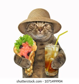 The cat in a straw hat holds a glass of cold tea and the smoked salmon with bubble waffles. White background.