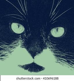 Cat stylized crosshatch portrait