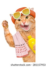 Cat with sunblock. For white banner.