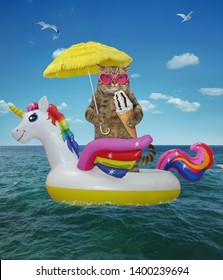 The cat in sunglasses under the umbrella eats chocolate ice cream cone on the inflatable circle in the sea. This swimming ring looks like an unicorn.