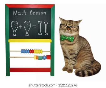 The cat teacher in glasses and a bow tie is next to a children blackboard.