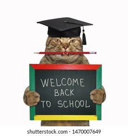 "The cat teacher in a square academic hat with a pencil in his mouth is holding the small blackboard with "" Welcome back to school "" on it. White background. Isolated."