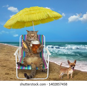 The cat under a yellow umbrella drinks beer with fish on a beach chair on the sea shore. The dog is next to it.