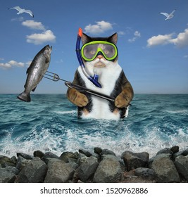 The cat underwater hunter in a mask and a snorkel with a spear gun caught a big fish in the sea.