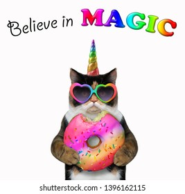 The cat unicorn is eating a big bitten color doughnut. Believe in magic. White background. Isolated.