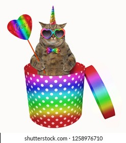 The cat unicorn in rainbow sunglasses and a bow tie with a crystal heart on a stick is inside a cylindrical polka-dot gift box. White background.