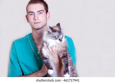 Cat and vet.