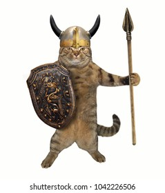 The cat in a viking helmet holds a spear and a shield. White background.