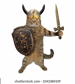 The cat in a viking helmet holds a sword and a shield. White background.