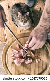 Cat  waiting eating piece of meat from the kitchen table