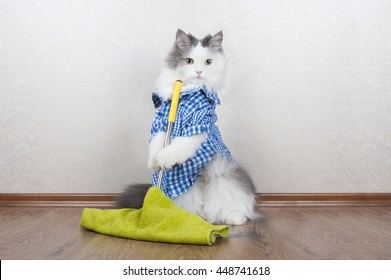 cat cleaning images  stock photos   vectors shutterstock Hand Sanitizer Clip Art Hand-Hygiene Clip Art
