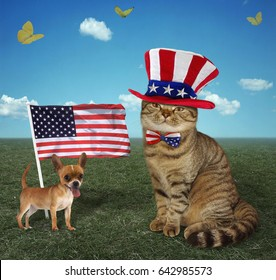The cat is wearing an American patriotic hat and bow tie. His friend dog is next to  an American flag.