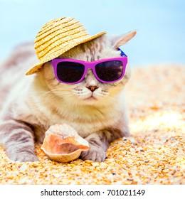 e417c3d2 Relaxation Fun Images, Stock Photos & Vectors   Shutterstock