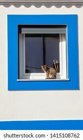 Cat in window in Porto Covo, Alentejo, Portugal January 10, 2018