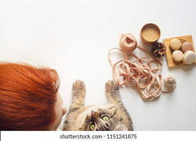Cat and woman drink coffee and unravel a tangle. Kitty looks up right to camera and young female with red hair drink latte with milk, eat macarons and knits yarn. Flat lay with copy space