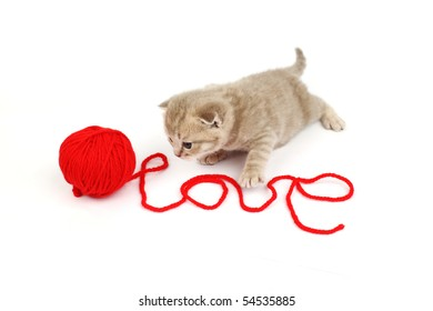 cat and wool sign love
