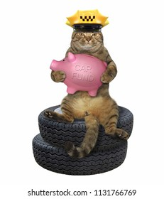 The cat in a yellow taxi driver hat sits on the stack of car wheels and holds pink piggy bank for buying a automobile. White background.
