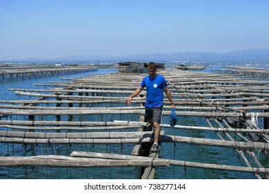 CATALONIA, SPAIN – JUNE 8, 2016: A man carries a bag of mussels across a shellfish farm in Port d'Illa Harbor, L'Ampolla, Catalonia, Spain.