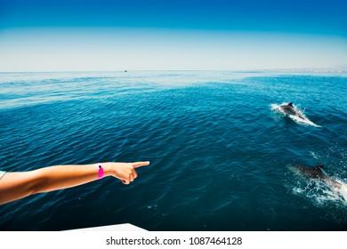 Catamaran, Costa Sol Cruceros, Benalmadena, Costa del Sol Occidental, Malaga, Andalusia, Spain, Iberian Peninsula