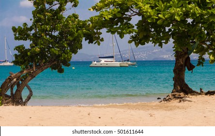 The catamaran and sailboats anchored in clear turquoise waters of Caribbean beach, Martinique island, French West Indies.