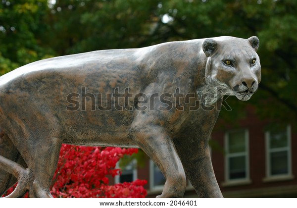 Catamount, Puma, Mountain Lion