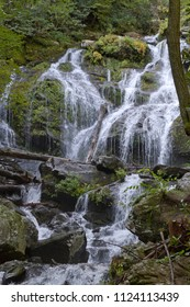 Catawba Falls, a scenic waterfall in the Blue Ridge Mountains, cascades over 100 feet onto rocks and logs at the end of the Catawba Falls hiking trail in Old Fort, NC