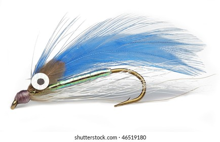 Catch the Fish with this fishing hook