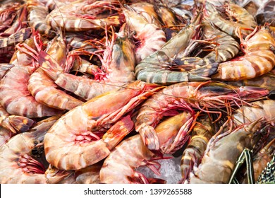 Catch of prawns lay on counter of the main Fish market of Kota Kinabalu, Malaysia