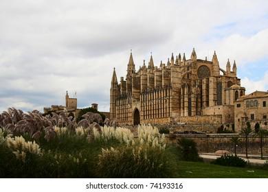 Catedral de Mallorca. Spain .