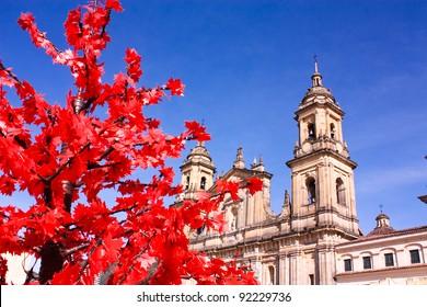 "Cathedral of Bogota. ""Catedral Basiiica Metropolitana de la Inmaculada Concepcion"". At the Bolivar square. La Candelaria district, Bogota, Colombia."