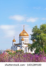 Cathedral of Christ Savior in Moscow, Russia. purple flowers in Gorky Park with view of Christ Savior Cathedral in Moscow. Beautiful orthodox church in summer blooming city and blue sky. copy space