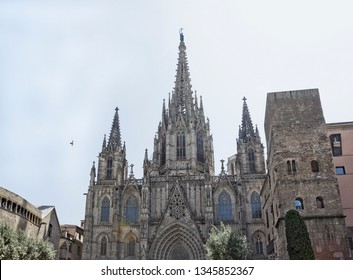 Cathedral of the Holy Cross and Saint Eulalia, or Barcelona Cathedral