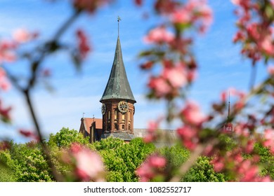 The Cathedral in the natural flowers frame, spring time