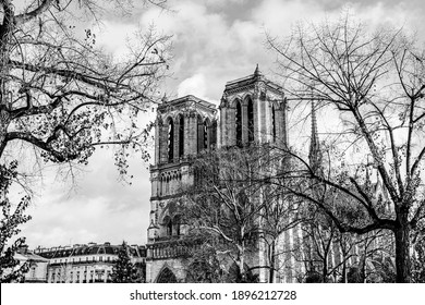 Cathedral Notre Dame de Paris viewed beyound empty tree branches during the winter season in black and white. The cathedral of Our Lady in Paris, France