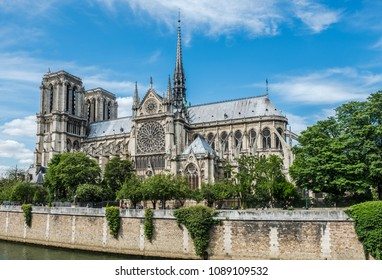 Cathedral of Notre Dame in Paris and the Seine riverbank in a good summer day