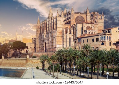 Cathedral of Palma de Mallorca La Seu was built on a cliff rising out of the sea. Exterior Gothic Roman Catholic church palm trees in a row, well-groomed famous place. Majorca, Balearic Islands Spain