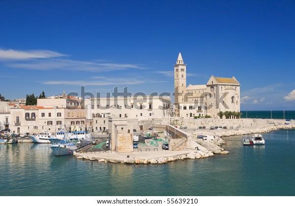 cathedral-sea-trani-apulia-600w-55639210
